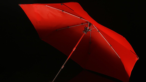 Cypress Umbrella